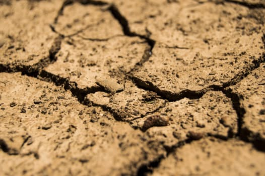 drought-aridity-dry-earth